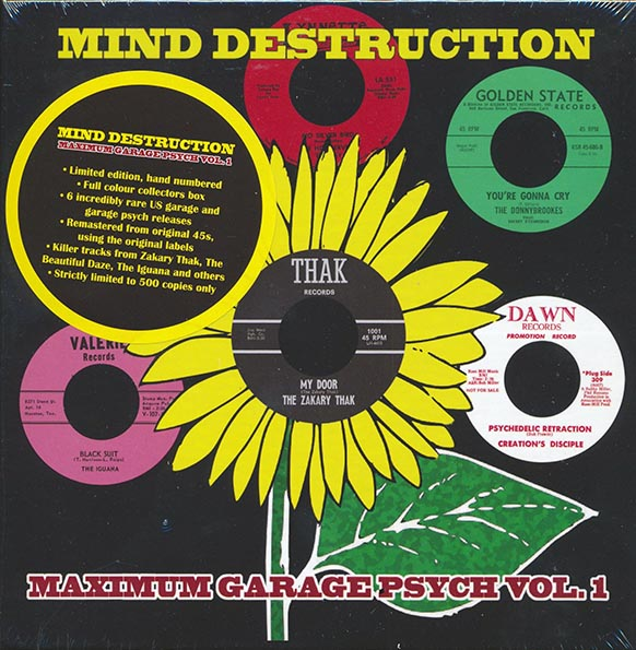Mind Destruction: Maximum Garage Psych Volume 1